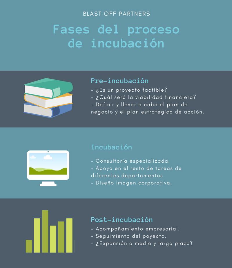 Diferentes fases del proceso de incubación de una startup